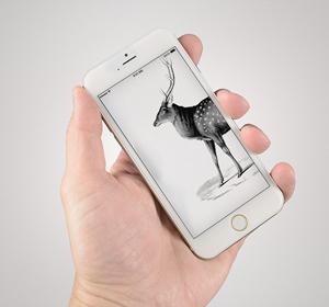 Next<span>Iphone 6 Mockup</span><i>→</i>